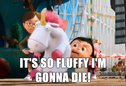 It's so fluffy I'm gonna die!